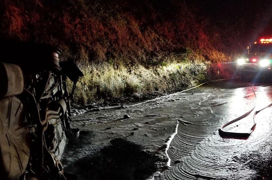 Дивні дива: ведмідь впав на дах поліцейської машини і влаштував пожежу