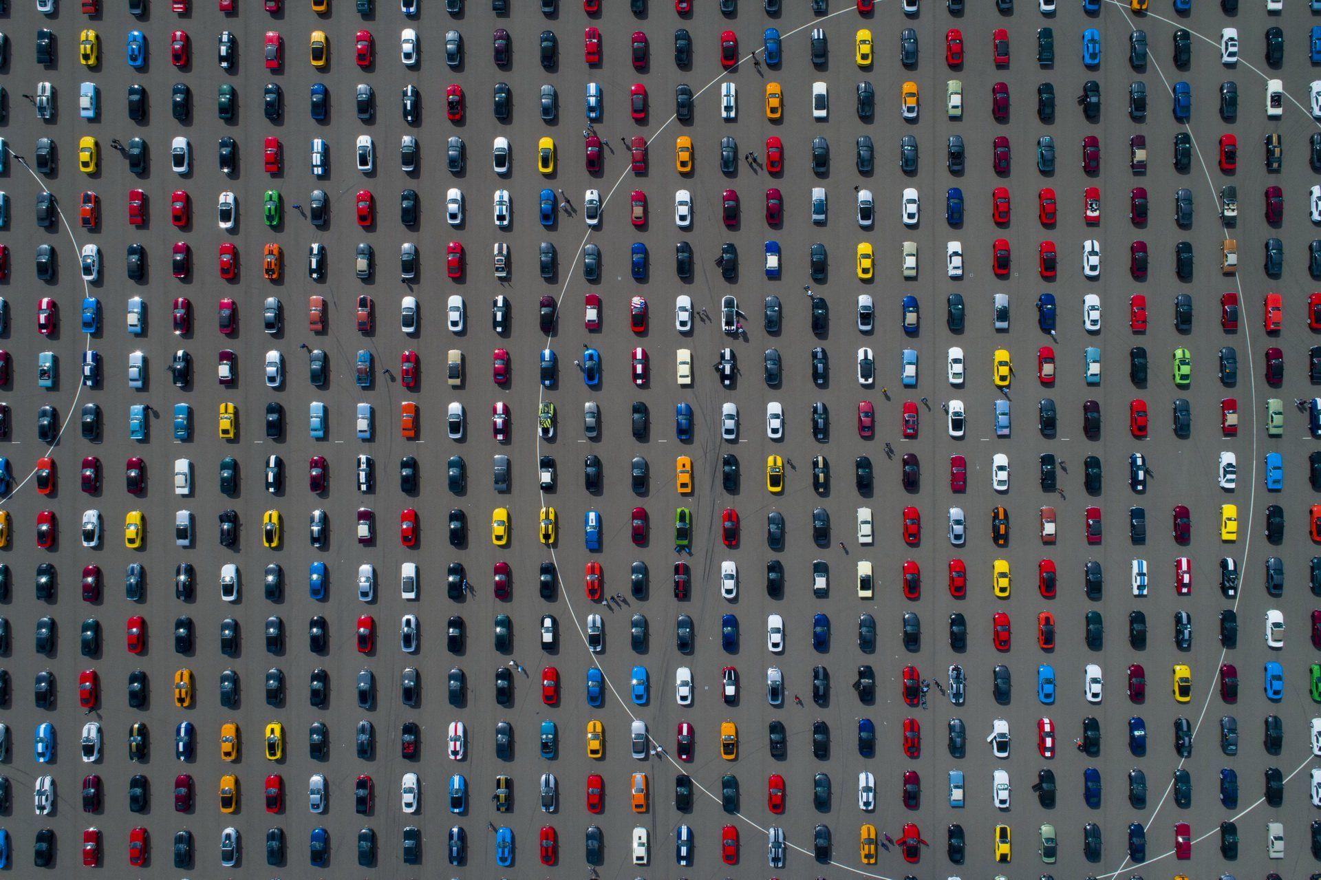 """Подивіться, як виглядає найбільший в світі табун із 1326 фордівських """"Мустангів"""" (відео)"""