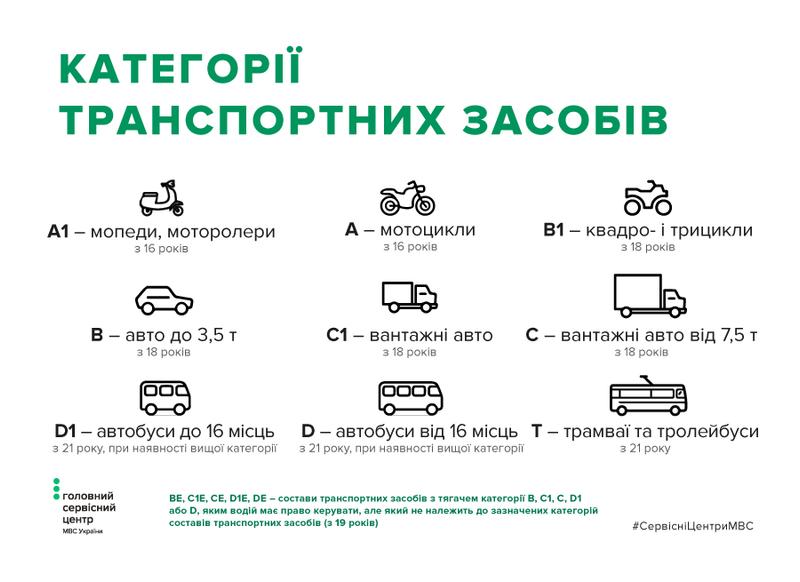 В Україні запустили перший онлайн-помічник в отриманні водійських прав
