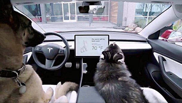 Tesla представила оновлення софту з новими функціями, які підказали клієнти