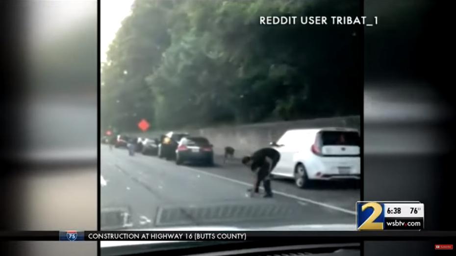 Інкасатори розкидали по дорозі 175 тисяч доларів: відео